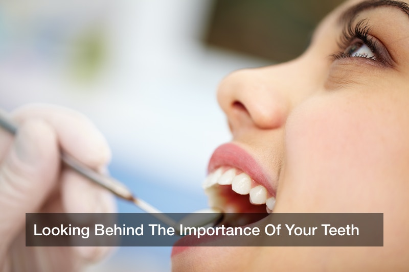 Looking Behind The Importance Of Your Teeth